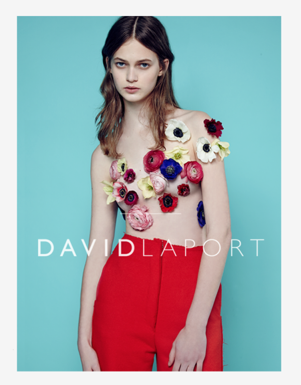 David Laport Collection  2014
