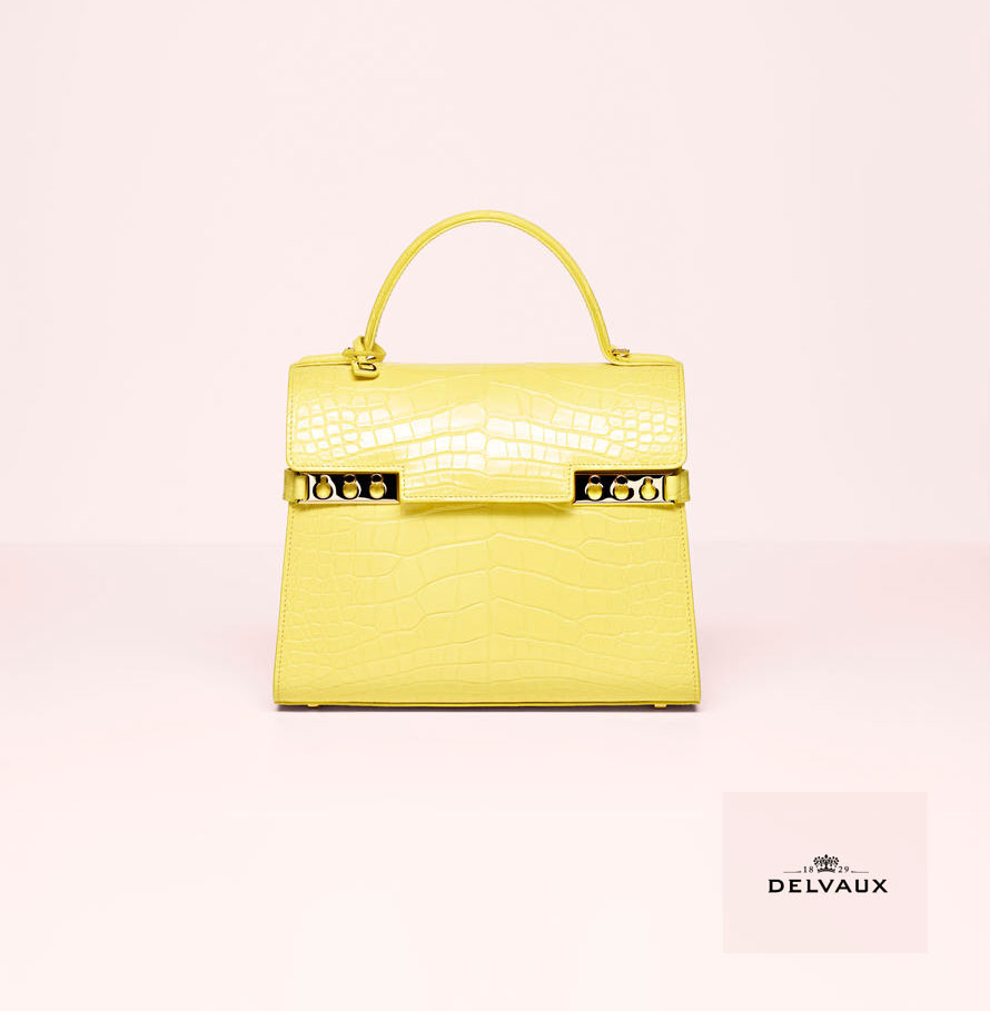 Delvaux  Collection Spring/Summer 2017