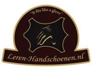 Leren-Handschoenen